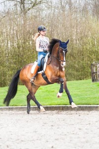 Bianco thuis training galop